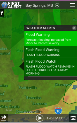 Flood forecast screenshot
